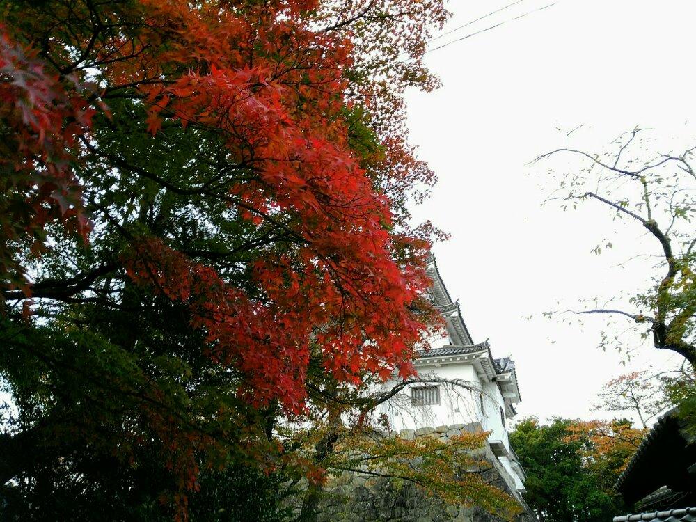 白石城の紅葉