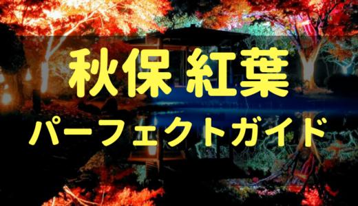 【2018版】秋保の紅葉 パーフェクトガイド|7ヶ所巡って秋を満喫