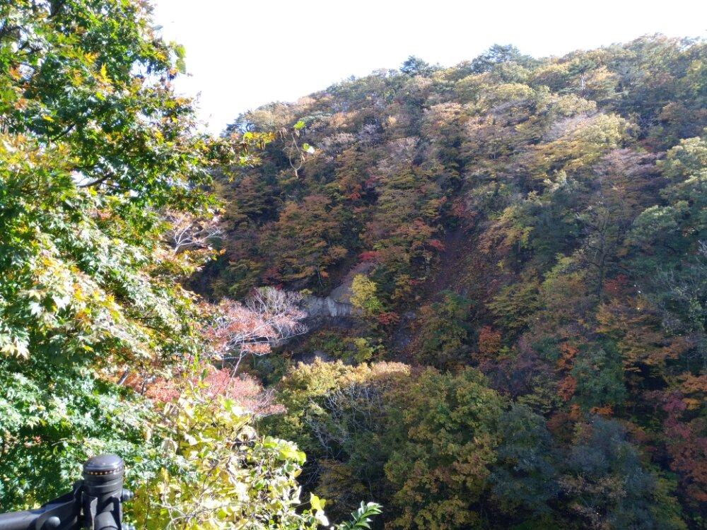 七ヶ宿町 滑津大滝の紅葉