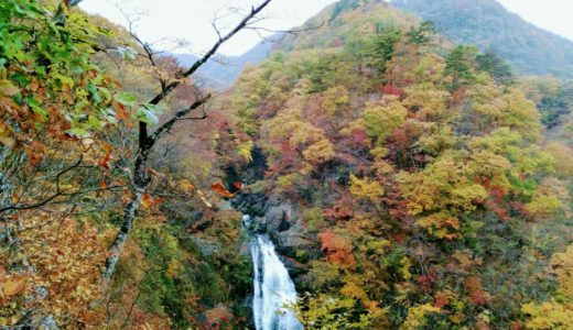 【秋保大滝マニア】何度行っても美しい!しぶきで虹が見えるポイントも紹介※紅葉追記