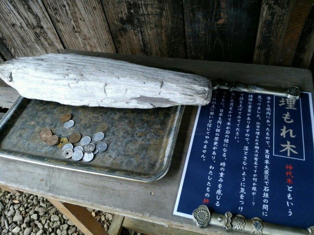 秋保神社の埋もれ木(神代木)