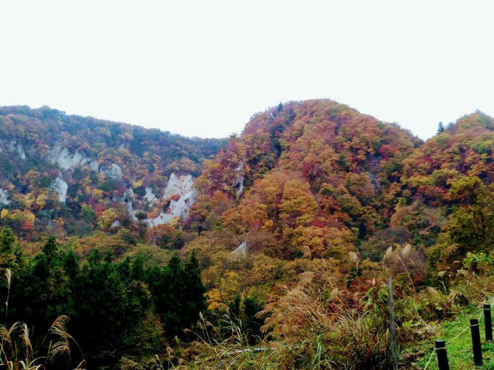秋保 白岩周辺の山