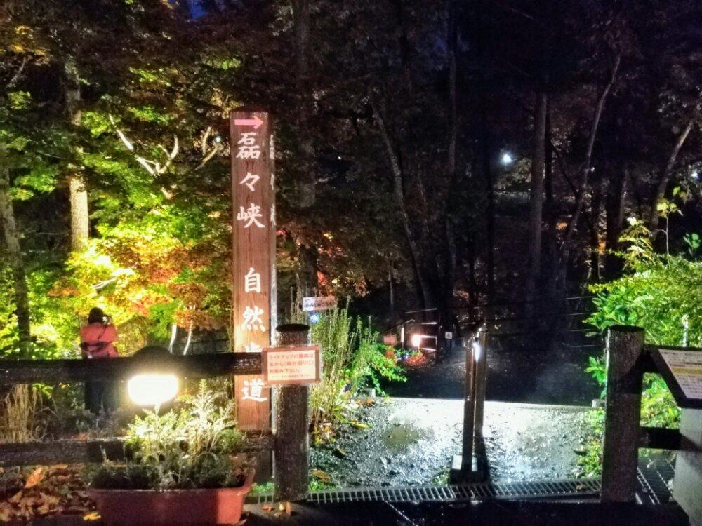 磊々峡 もみじのこみちライトアップ 2018