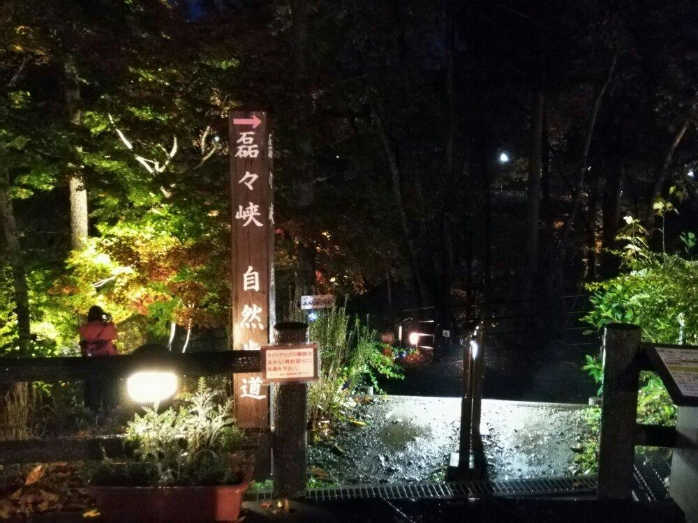 秋保 磊々峡もみじのこみちライトアップ2018