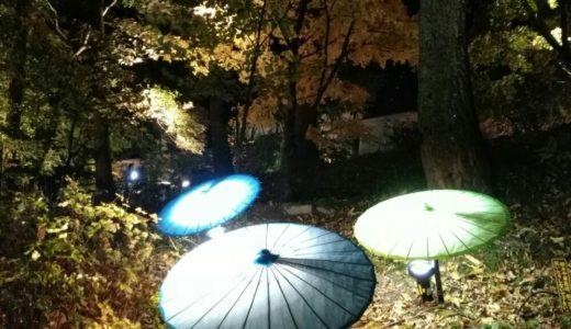 【体験レポート】秋保 磊々峡もみじのこみちライトアップ2018|入場無料!