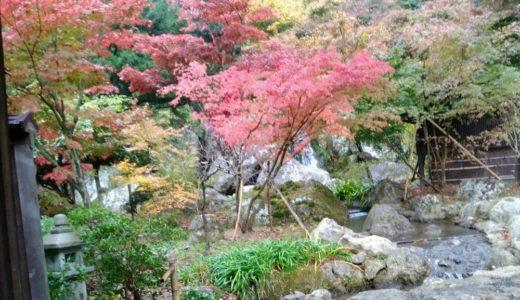 【体験レポート】天守閣自然公園|秋保で一番好きな足湯!コイに餌やりも楽しい