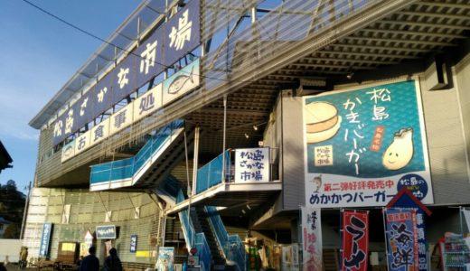 【体験レポート】松島さかな市場|1500種のお土産とフードコート