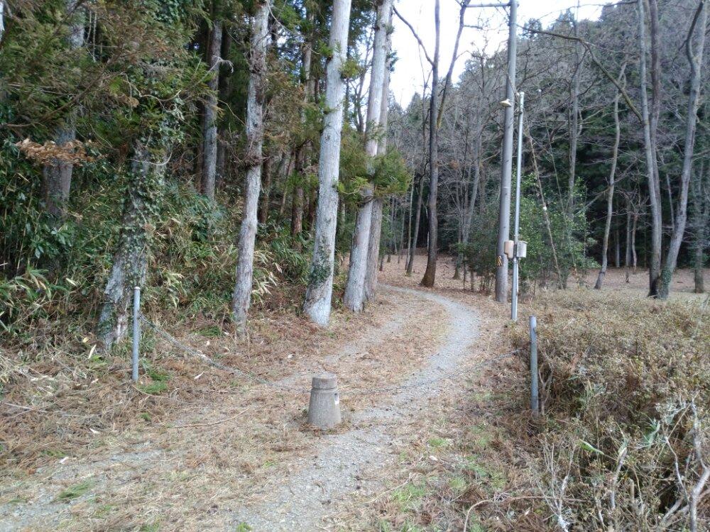 昆虫公園の道