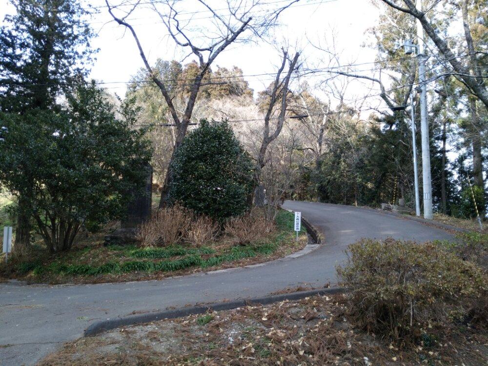 大高山遊歩道への道