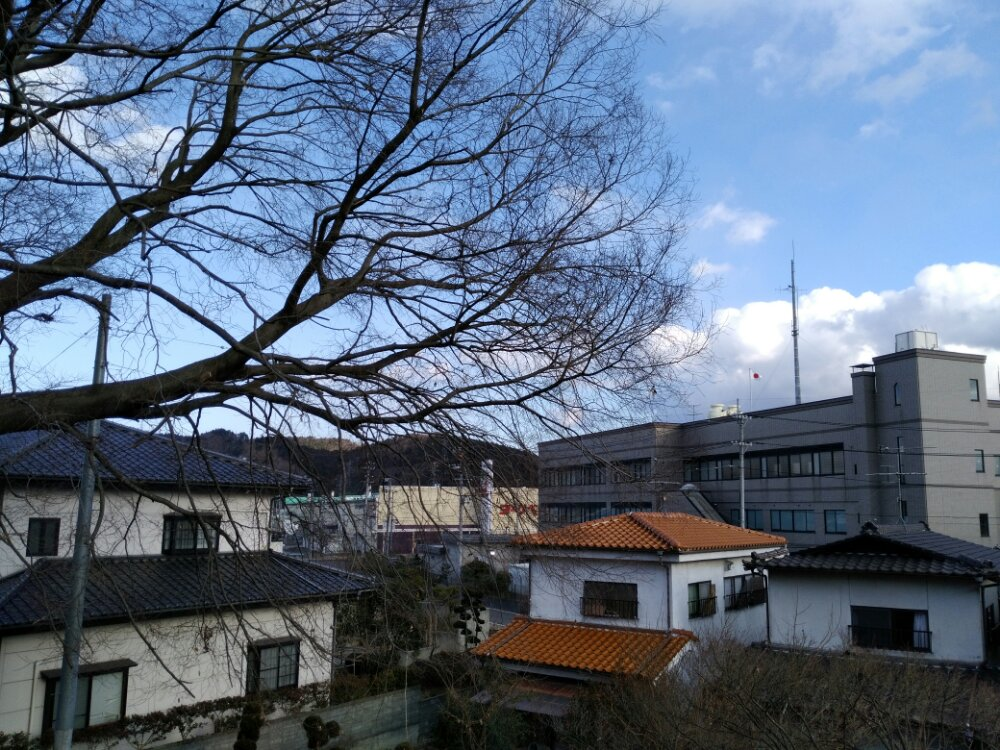 嶋舘神社からの景色