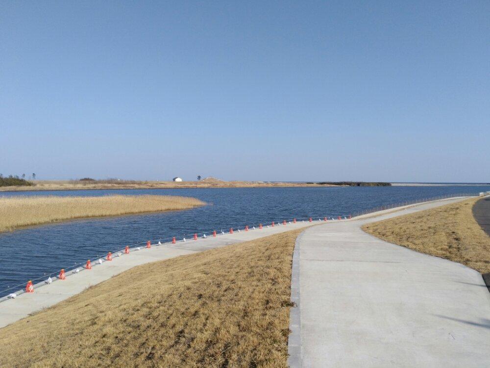 かわまちてらす閖上の名取川堤防沿い