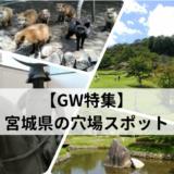 宮城県GWの穴場観光地