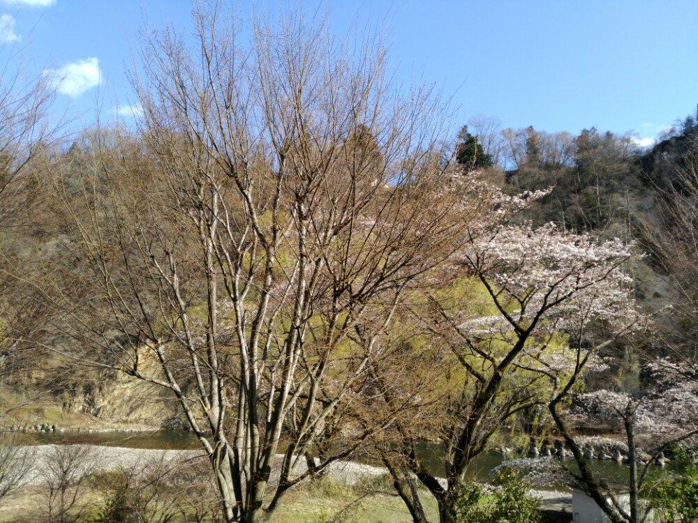 茂庭荘の露天風呂からの景色