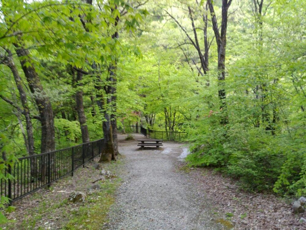 展望台の道
