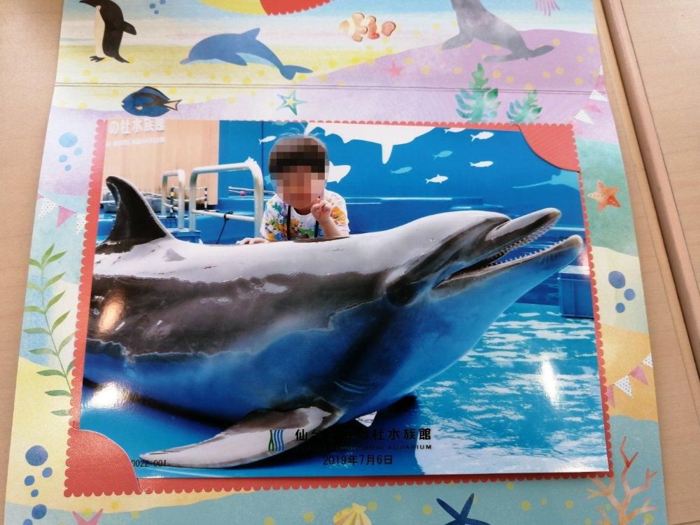 仙台うみのもり水族館でイルカと写真
