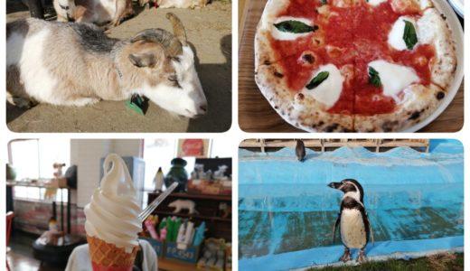 【体験レポート】仙台市 八木山動物公園|ふれあいの丘や食事処がパワーアップしてた!