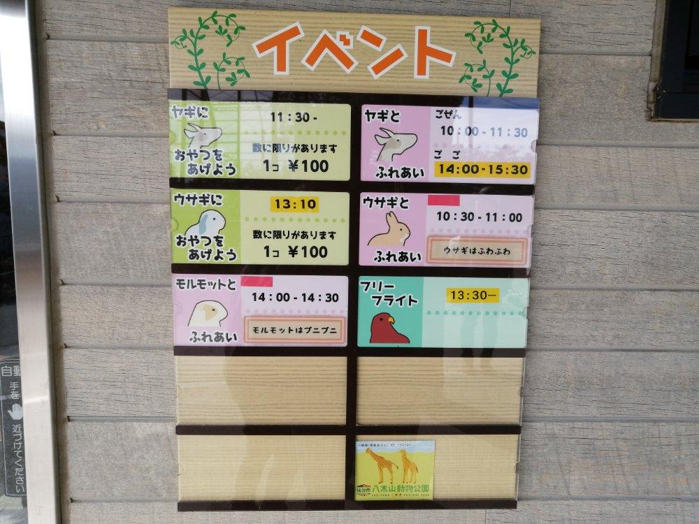 八木山動物公園のふれあいイベント時間