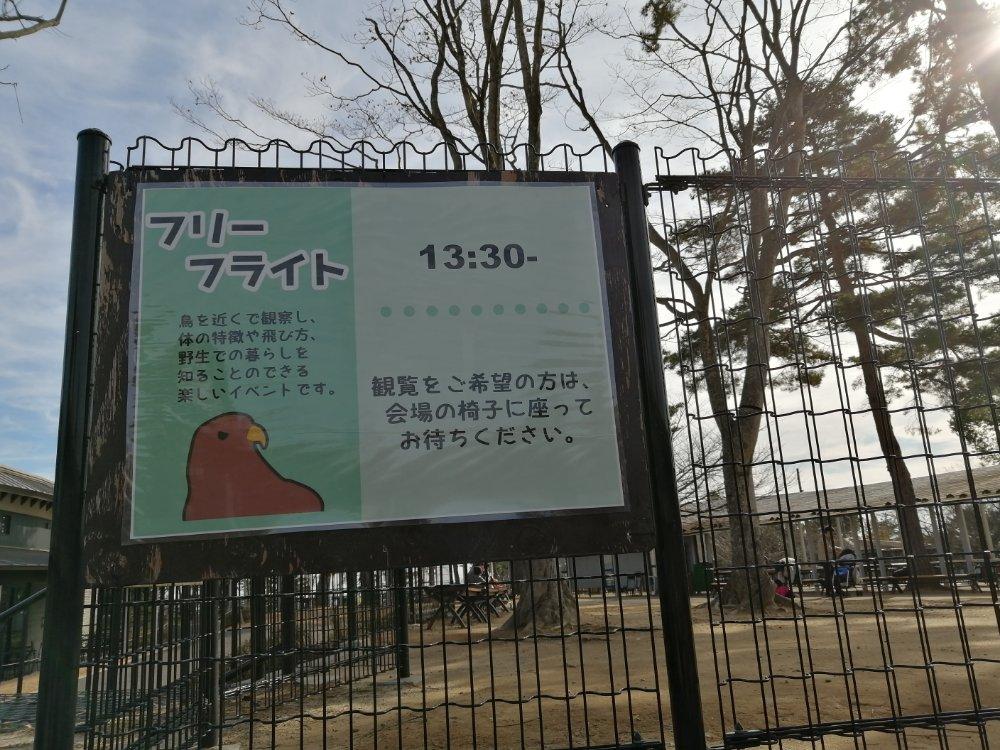 八木山動物公園のフリーフライト