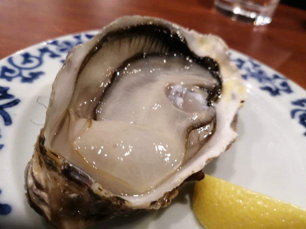 肉厚の生牡蠣