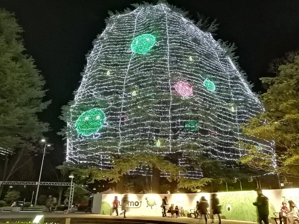 市民広場のシンボルツリー(スーモ)
