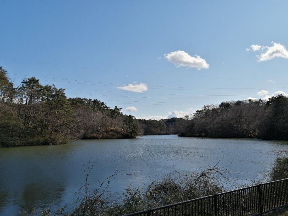 水の森公園のため池