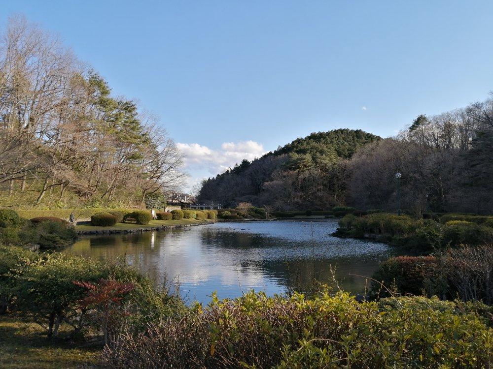 台原森林公園の大池