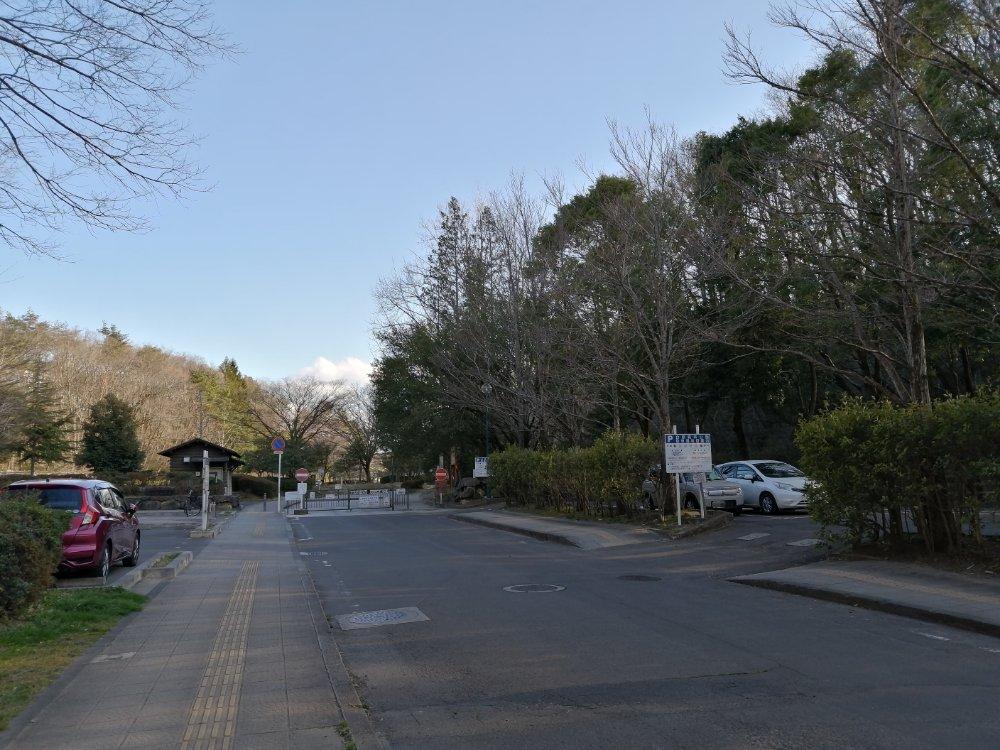 台原森林公園駐車場(黒松)