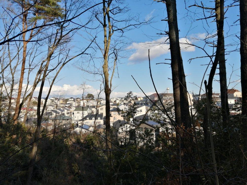 台原森林公園から見た住宅街