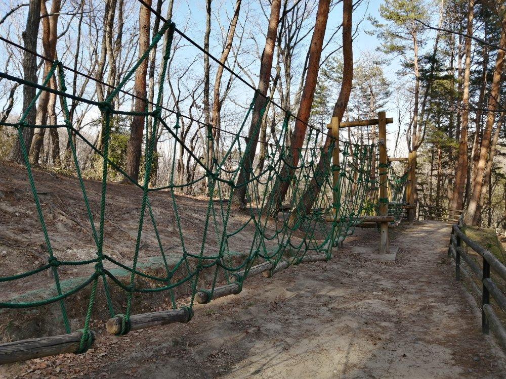 台原森林公園のアスレチック遊具