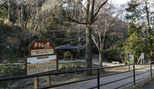 【仙台・宮城】蛍が見れる場所まとめ|2020年のホタル祭りはほぼ中止