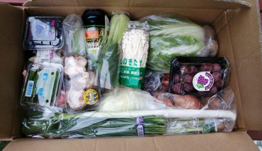 【体験レポ】仙台初出店!ドライブスルー八百屋で「もったいない野菜セット」を購入!