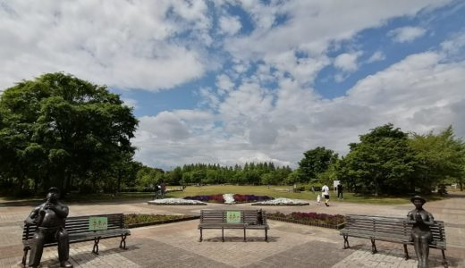 【公園さんぽ】仙台市泉区 七北田公園|大型遊具や広場、泉ヶ池など