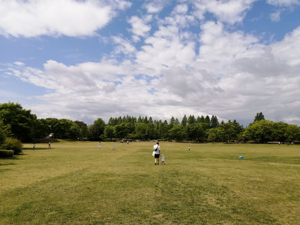 七北田公園の芝生広場