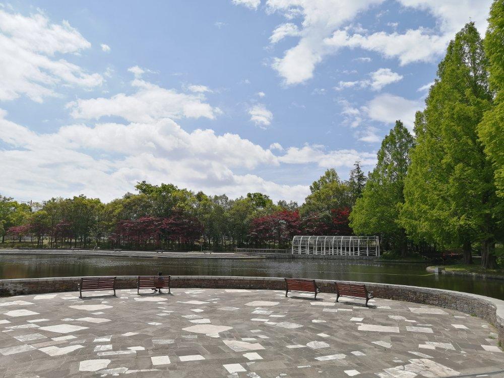 七北田公園の泉ヶ池