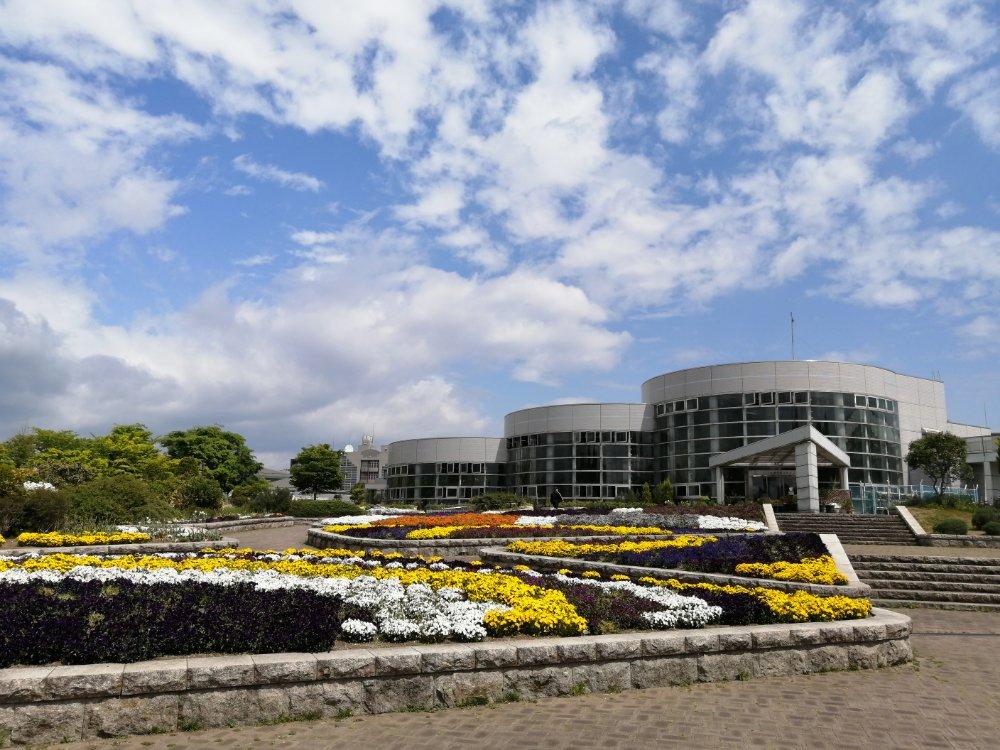 七北田公園の花畑