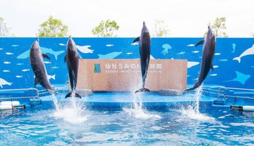 【イベント情報】仙台うみの杜水族館|うみの杜サマー2020【これは楽しみ】