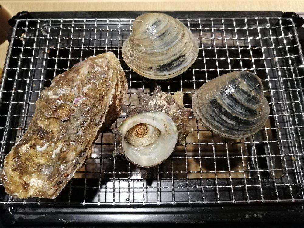 牡蠣、さざえ、白ハマグリ