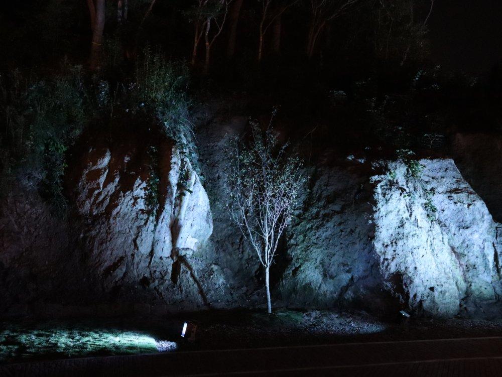 松島離宮の岩ライトアップ