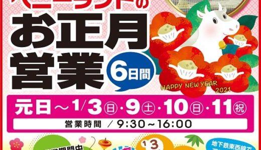 【仙台-八木山ベニーランド】お正月は入園料無料!たこづくり教室のイベント開催も
