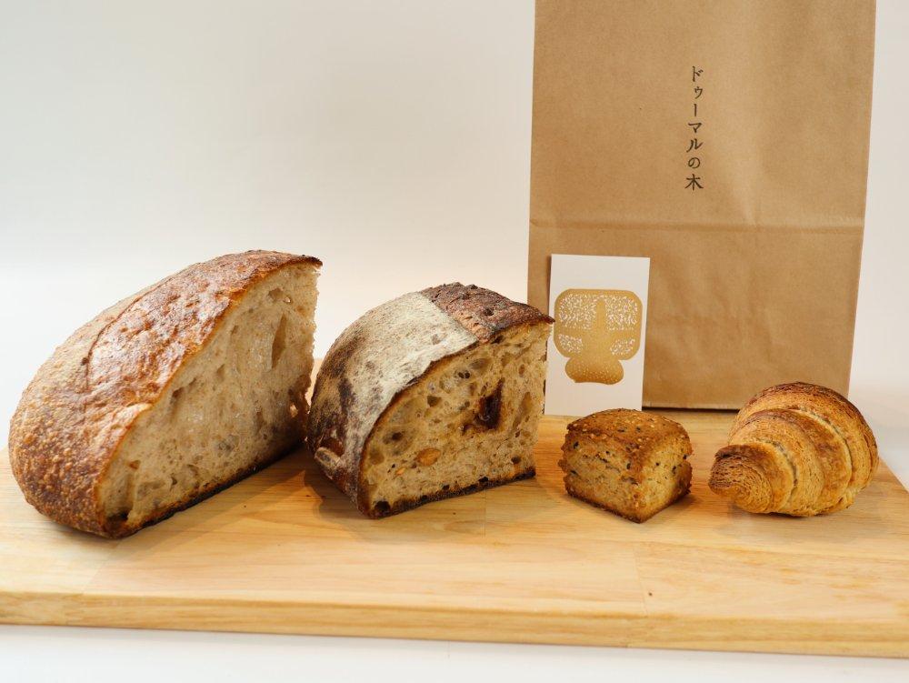 ドゥーマルの木のハードパン
