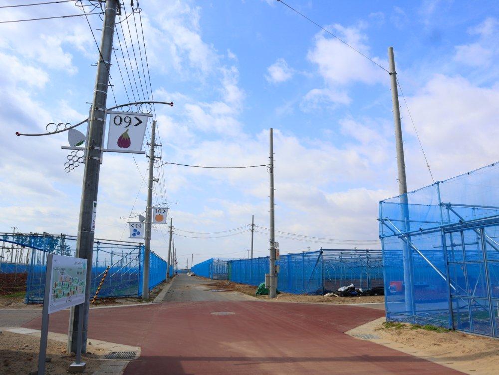 JRフルーツパーク仙台あらはま 農園