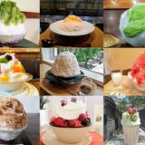 【リアルレポ】仙台の美味しい『かき氷』10選|実際に食べて随時更新中!
