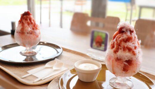 フルーツパークに自社農園で収穫した苺の「にこにこベリーのミルクかき氷」が新登場!